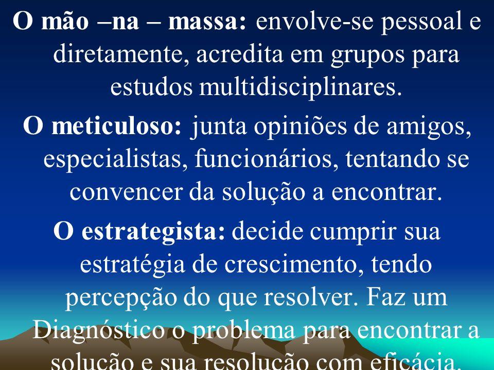 O mão –na – massa: envolve-se pessoal e diretamente, acredita em grupos para estudos multidisciplinares.
