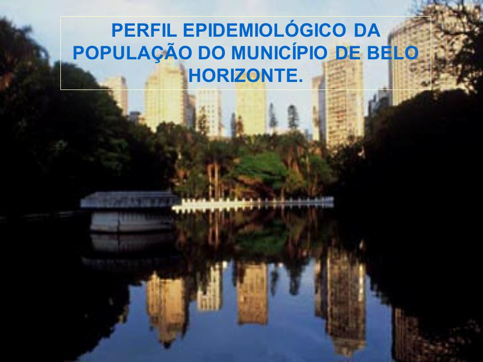 PERFIL EPIDEMIOLÓGICO DA POPULAÇÃO DO MUNICÍPIO DE BELO HORIZONTE.
