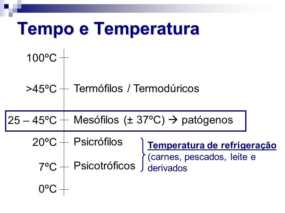Tempo e Temperatura 100ºC Termófilos / Termodúricos >45ºC