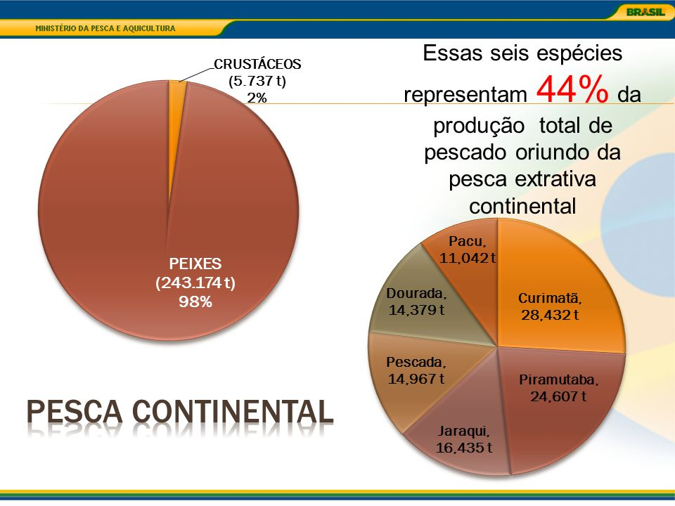 Essas seis espécies representam 44% da produção total de pescado oriundo da pesca extrativa continental