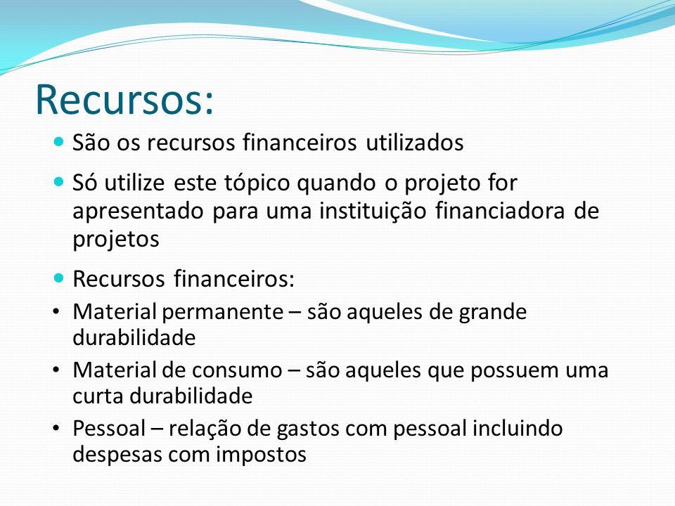 Recursos: São os recursos financeiros utilizados