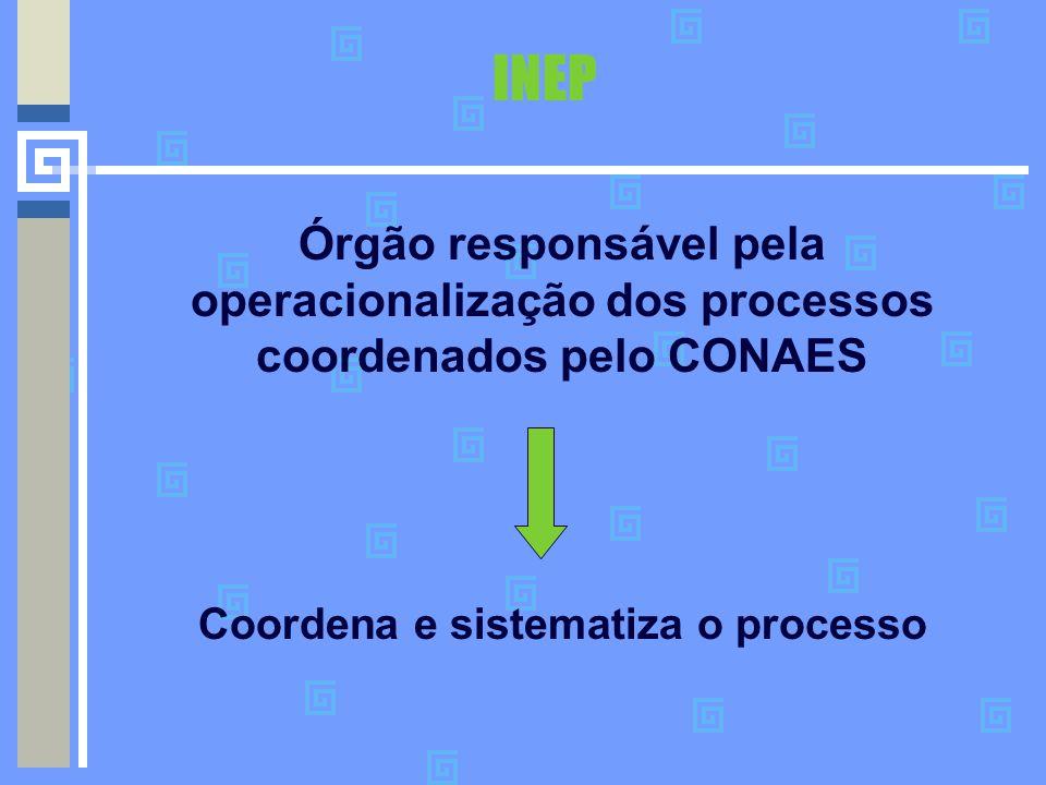 Coordena e sistematiza o processo