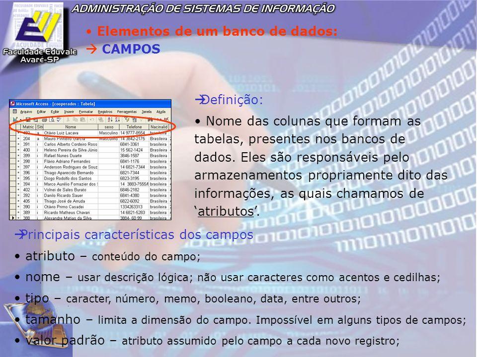Elementos de um banco de dados: