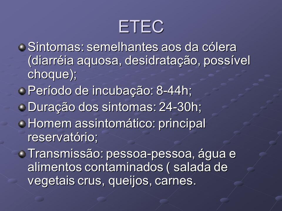ETEC Sintomas: semelhantes aos da cólera (diarréia aquosa, desidratação, possível choque); Período de incubação: 8-44h;