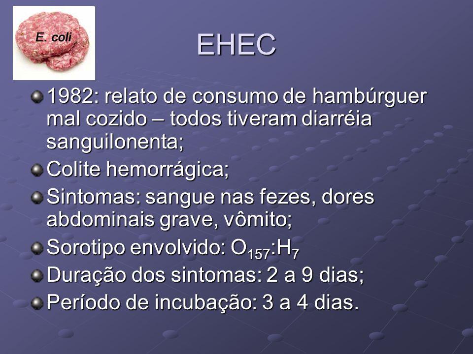 EHEC 1982: relato de consumo de hambúrguer mal cozido – todos tiveram diarréia sanguilonenta; Colite hemorrágica;