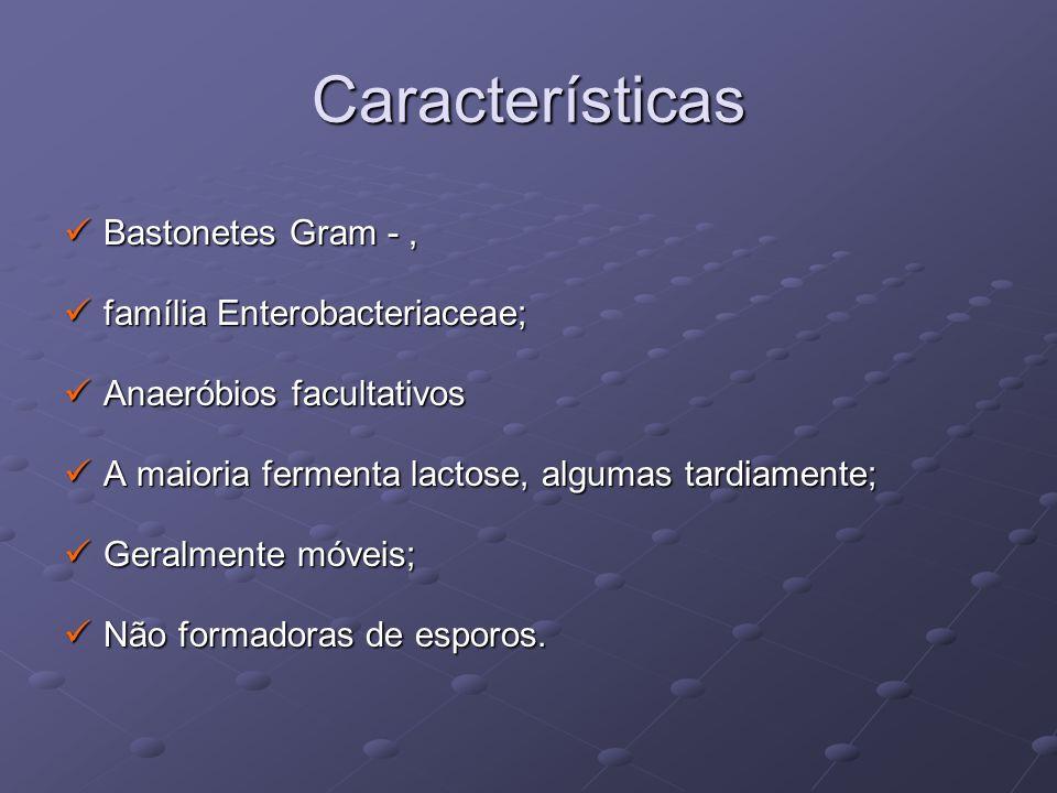Características Bastonetes Gram - , família Enterobacteriaceae;