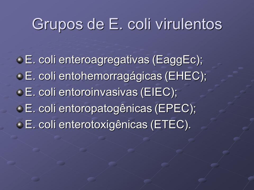 Grupos de E. coli virulentos
