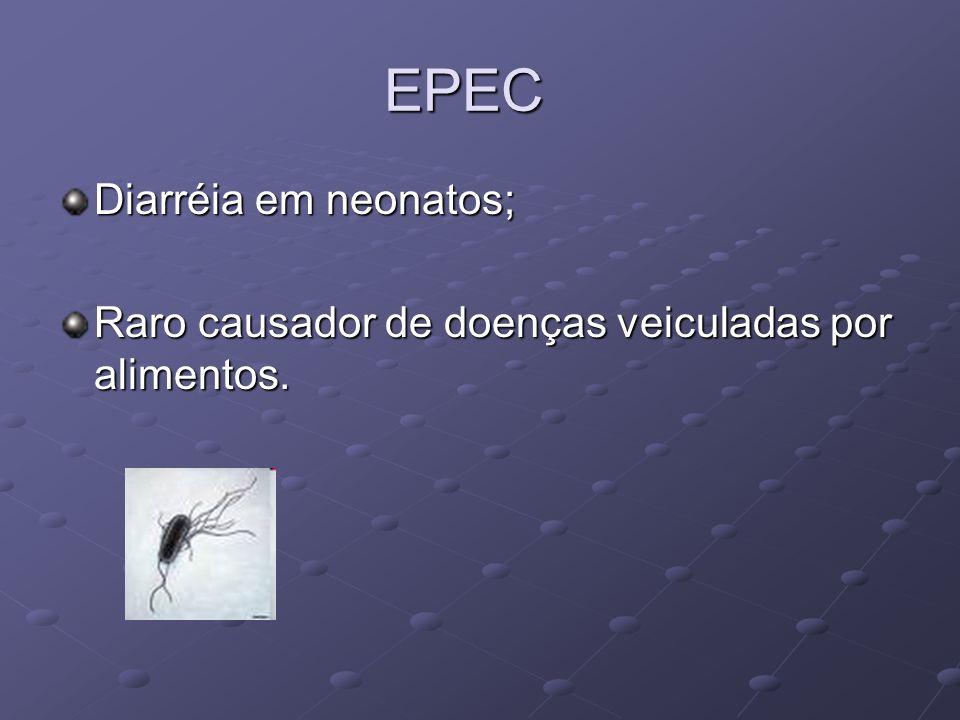 EPEC Diarréia em neonatos;