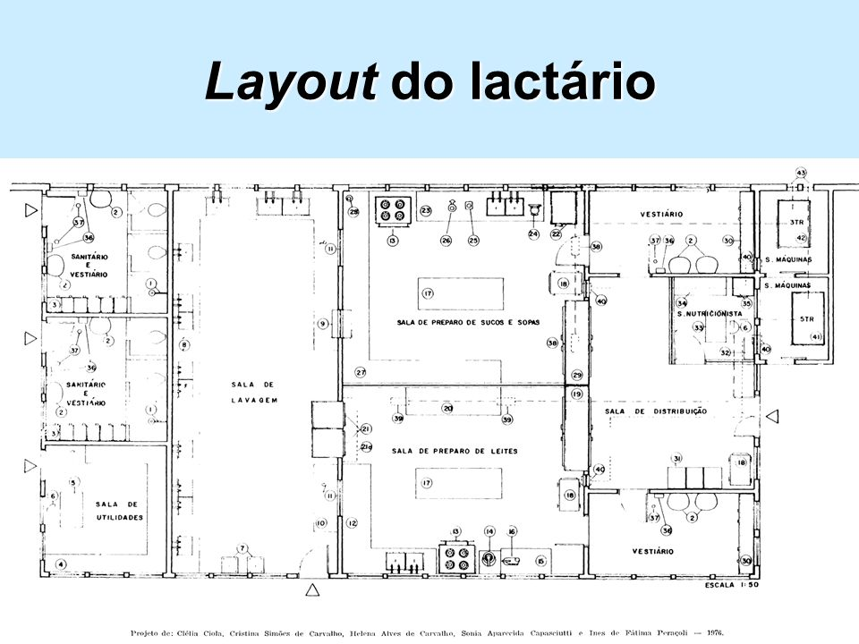 Layout do lactário