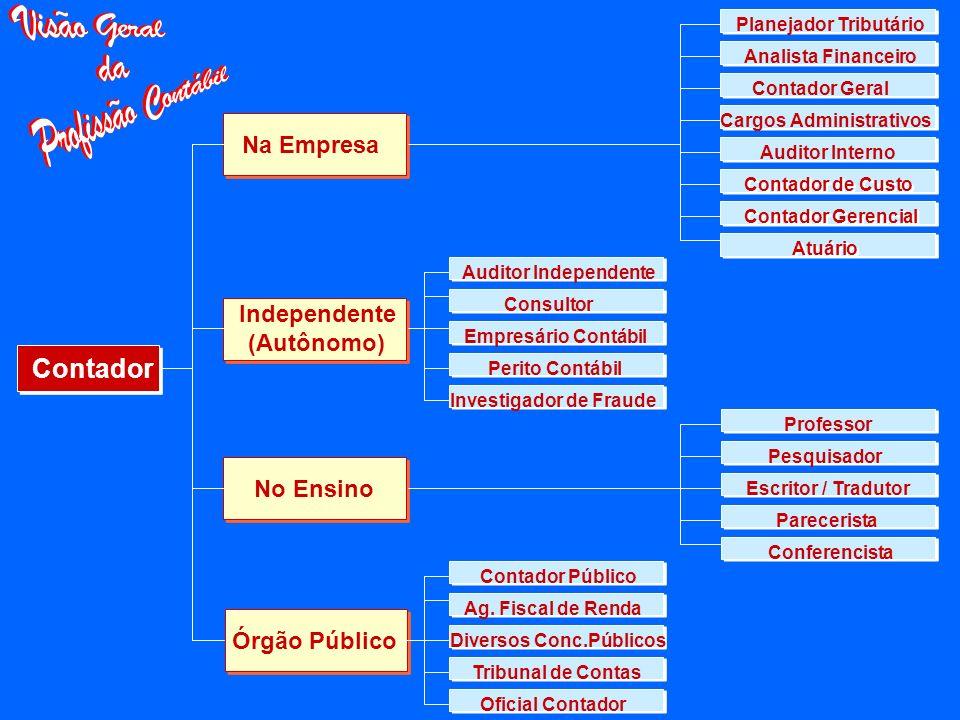 Contador Na Empresa Independente (Autônomo) No Ensino Órgão Público