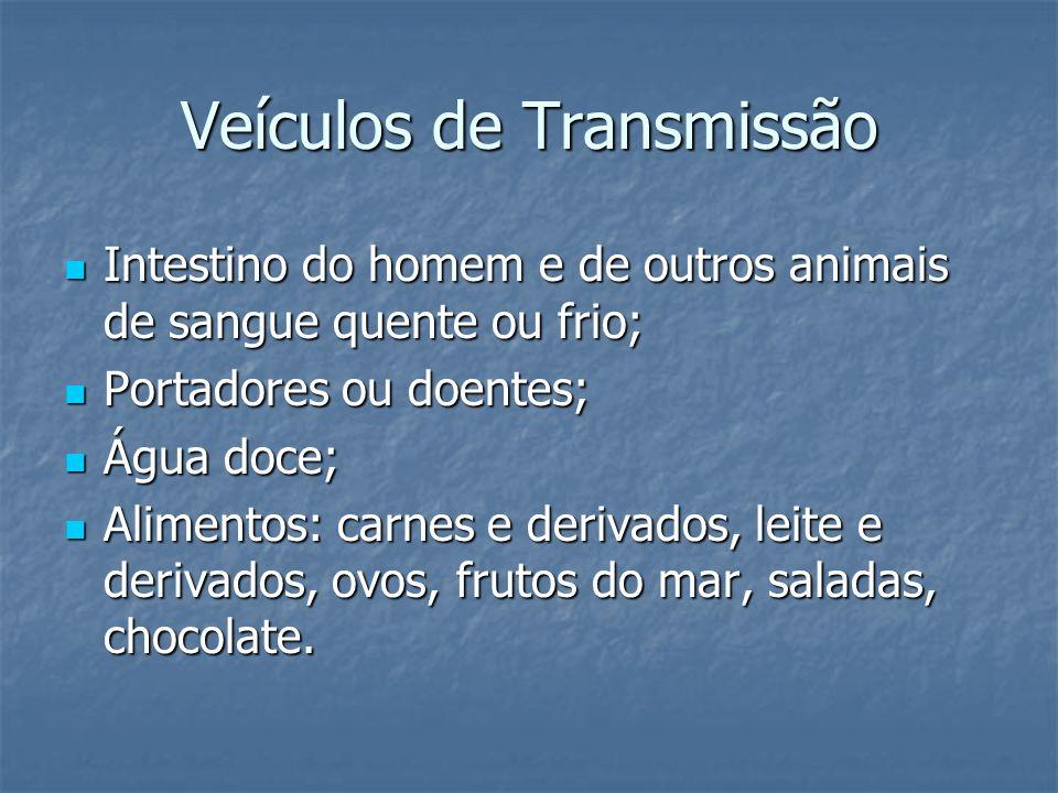 Veículos de Transmissão