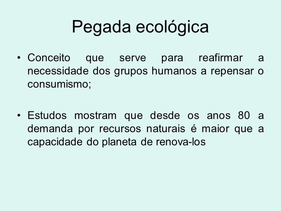 Pegada ecológica Conceito que serve para reafirmar a necessidade dos grupos humanos a repensar o consumismo;