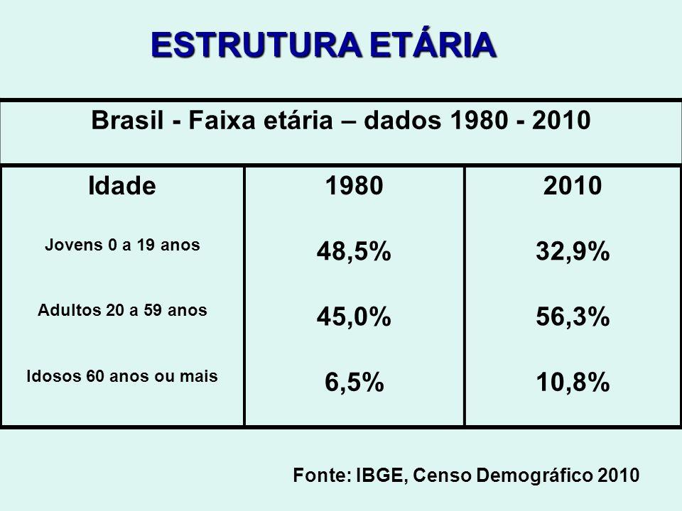 Brasil - Faixa etária – dados 1980 - 2010