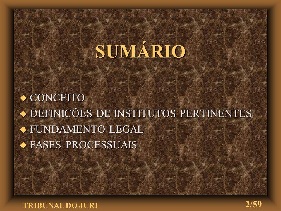 SUMÁRIO CONCEITO DEFINIÇÕES DE INSTITUTOS PERTINENTES FUNDAMENTO LEGAL