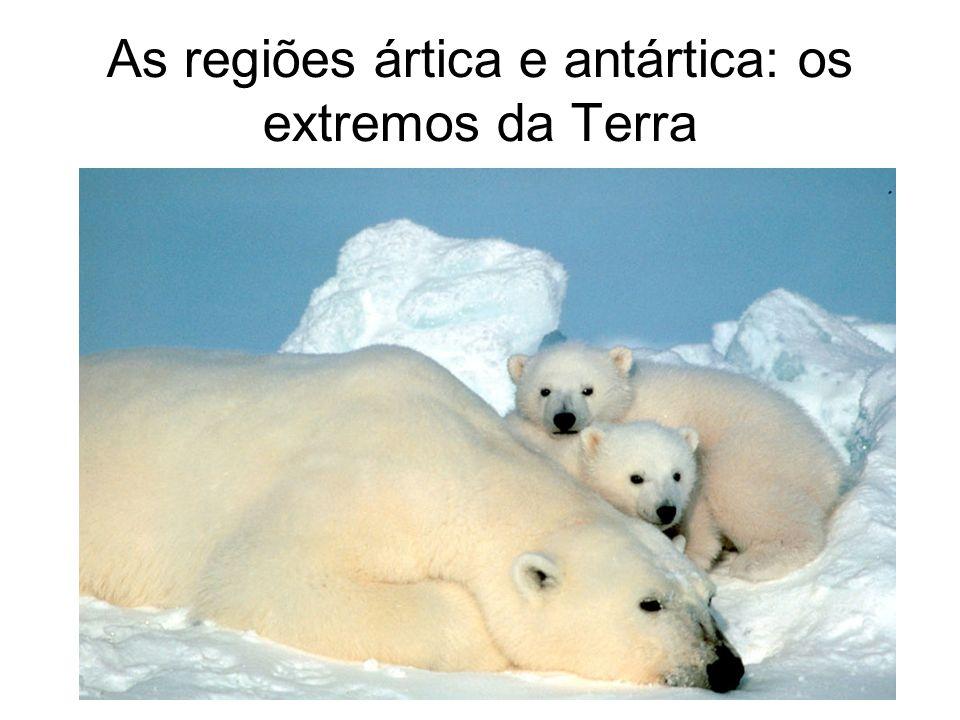 As regiões ártica e antártica: os extremos da Terra