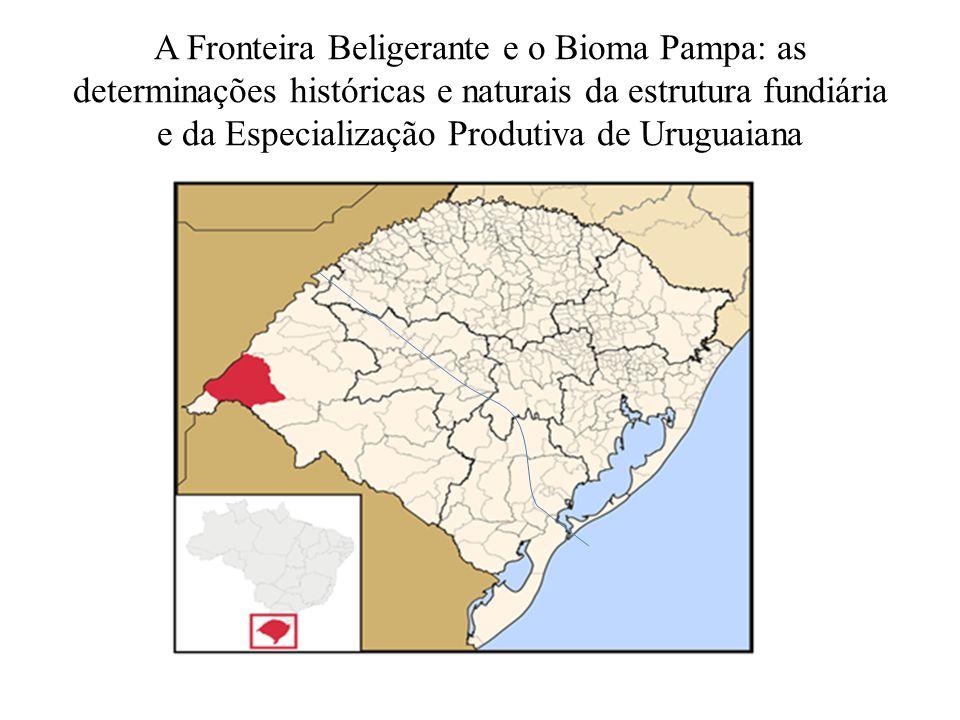 A Fronteira Beligerante e o Bioma Pampa: as determinações históricas e naturais da estrutura fundiária e da Especialização Produtiva de Uruguaiana