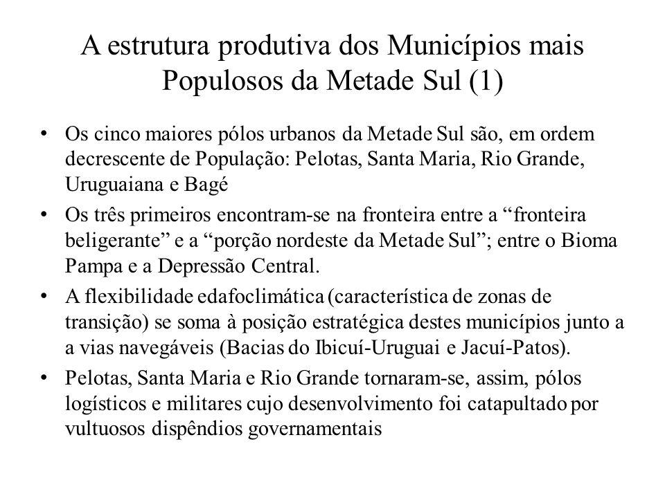 A estrutura produtiva dos Municípios mais Populosos da Metade Sul (1)