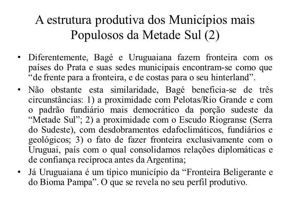 A estrutura produtiva dos Municípios mais Populosos da Metade Sul (2)