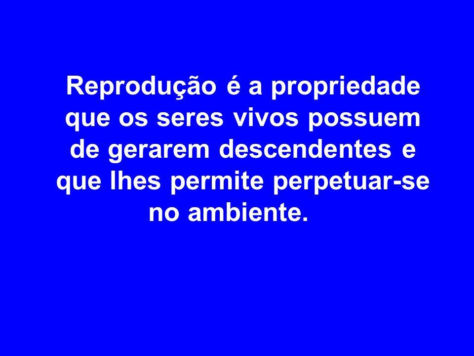 Reprodução é a propriedade que os seres vivos possuem de gerarem descendentes e que lhes permite perpetuar-se no ambiente.