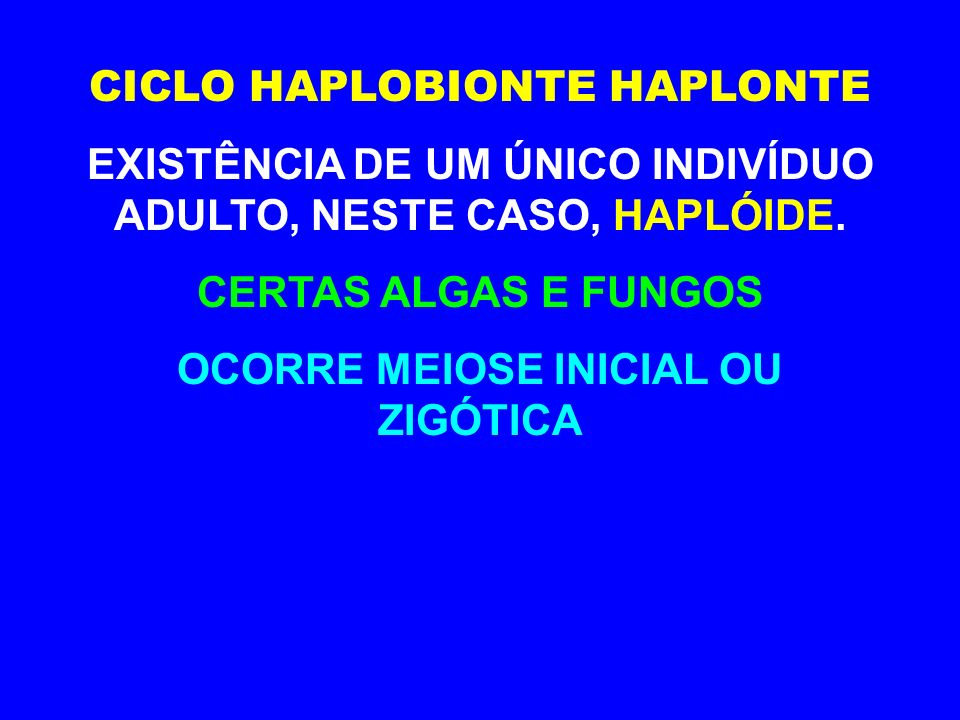 CICLO HAPLOBIONTE HAPLONTE