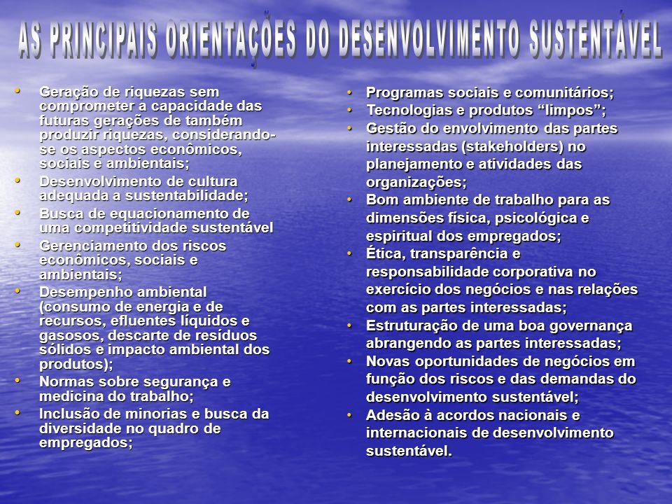 AS PRINCIPAIS ORIENTAÇÕES DO DESENVOLVIMENTO SUSTENTÁVEL