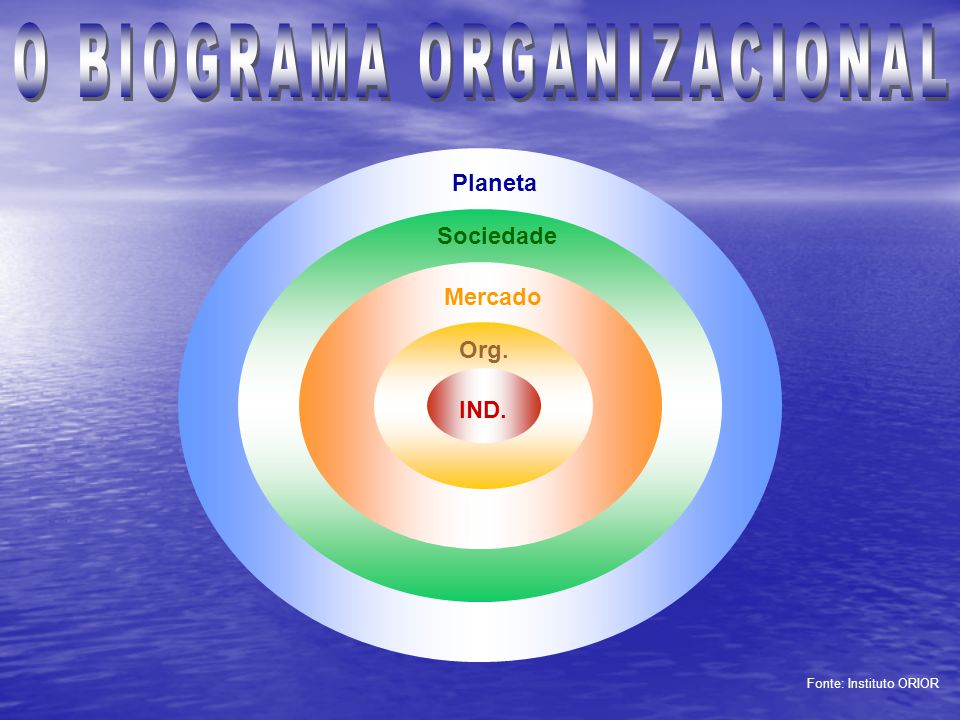 O BIOGRAMA ORGANIZACIONAL