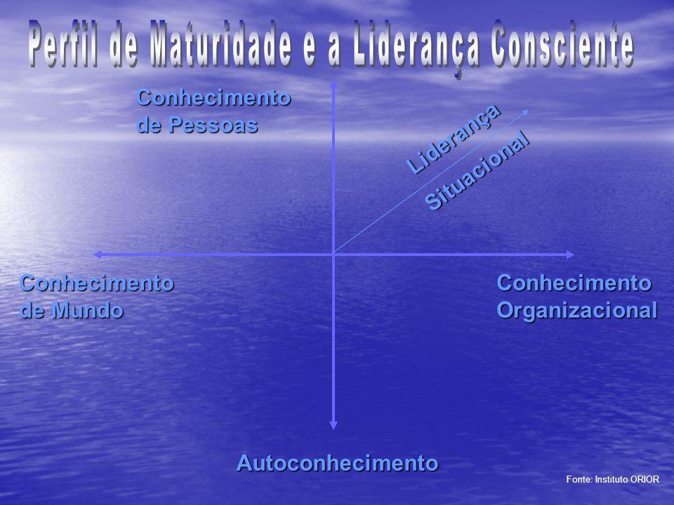 Perfil de Maturidade e a Liderança Consciente
