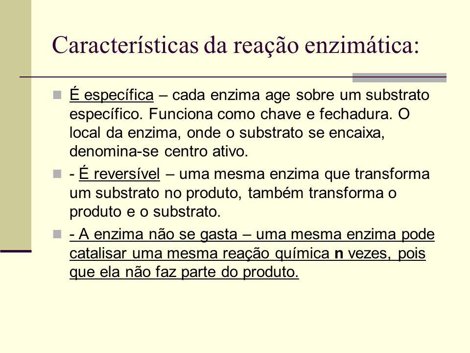 Características da reação enzimática: