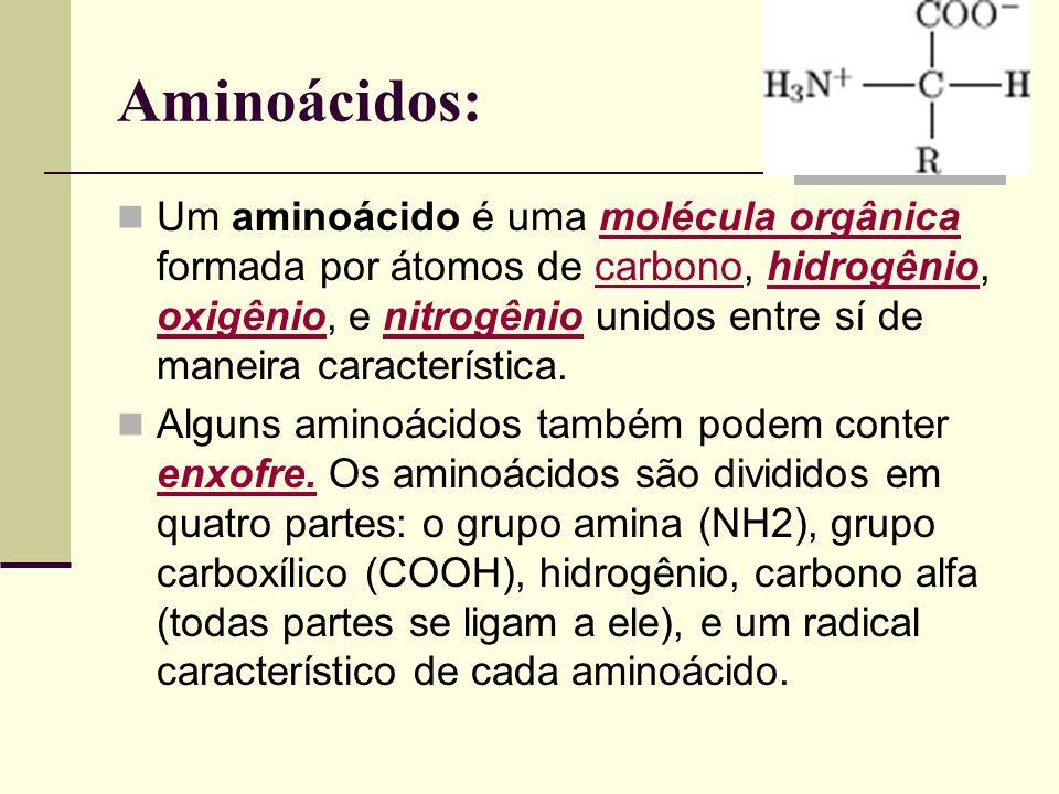 Aminoácidos: