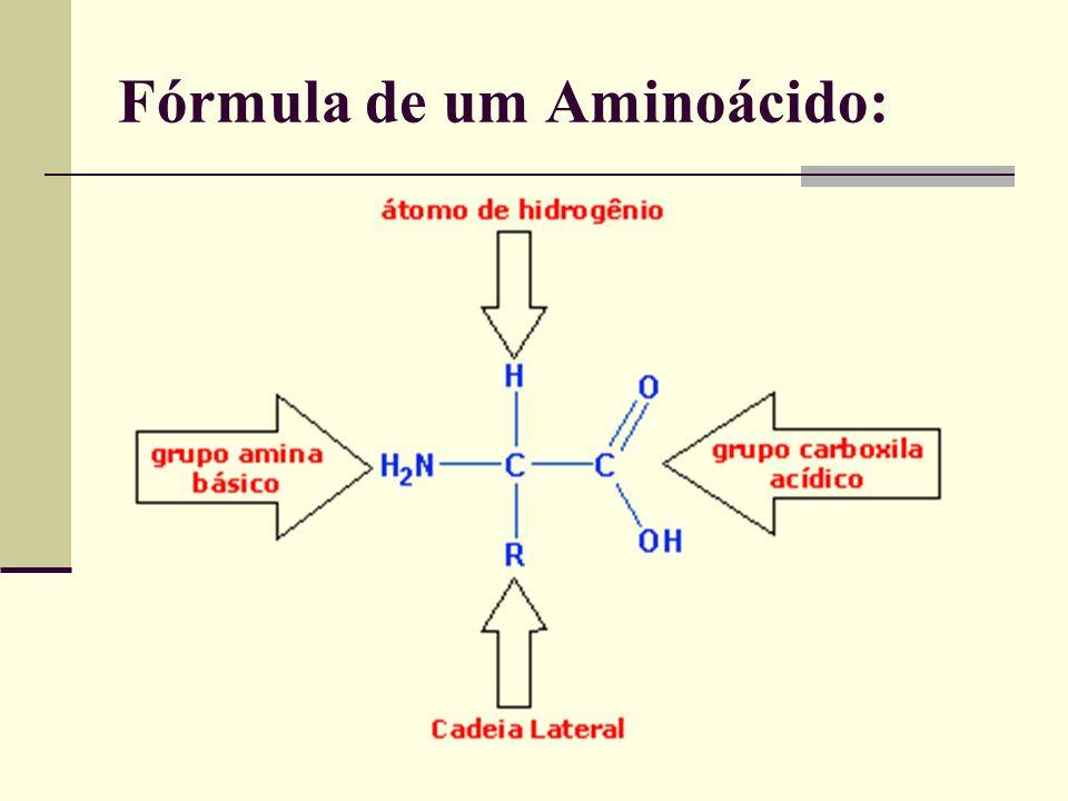 Fórmula de um Aminoácido:
