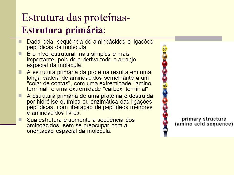 Estrutura das proteínas- Estrutura primária: