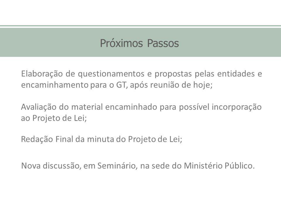 Próximos Passos Elaboração de questionamentos e propostas pelas entidades e encaminhamento para o GT, após reunião de hoje;