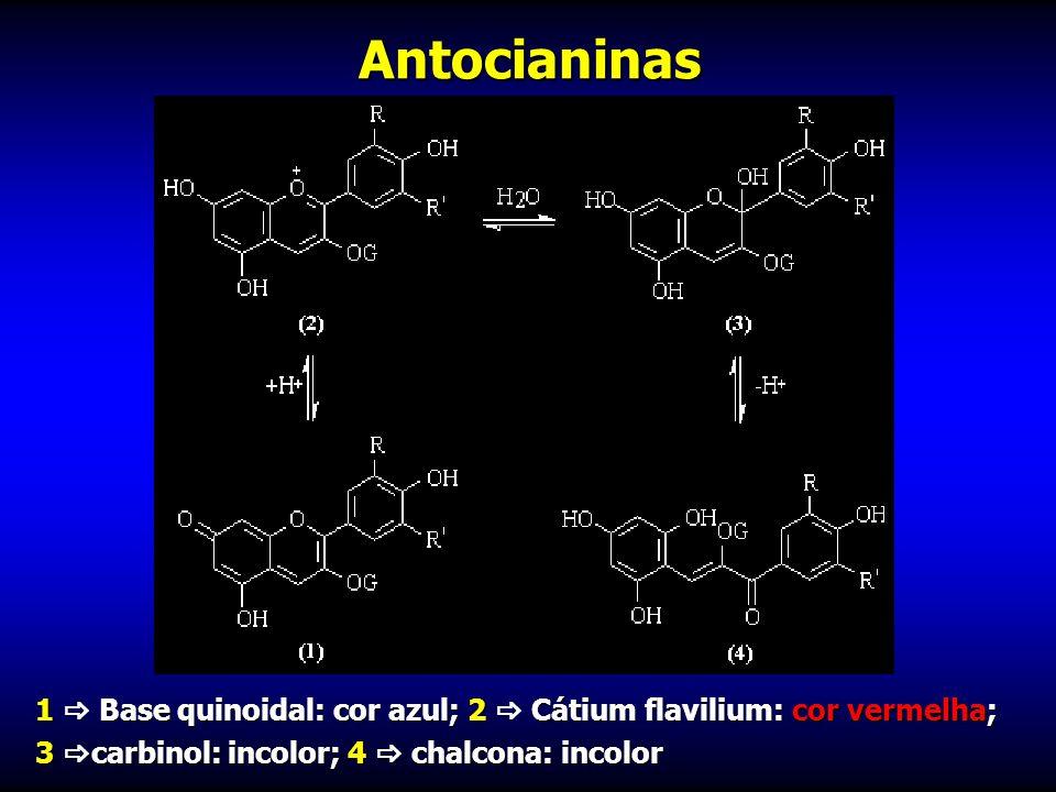 Antocianinas 1  Base quinoidal: cor azul; 2  Cátium flavilium: cor vermelha; 3 carbinol: incolor; 4  chalcona: incolor.