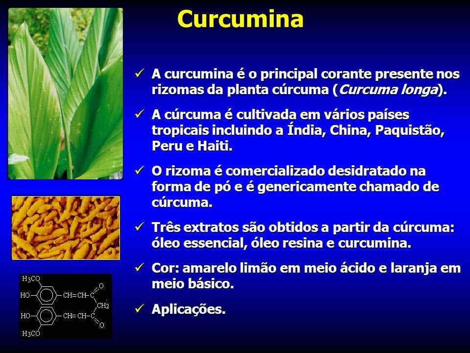 Curcumina A curcumina é o principal corante presente nos rizomas da planta cúrcuma (Curcuma longa).