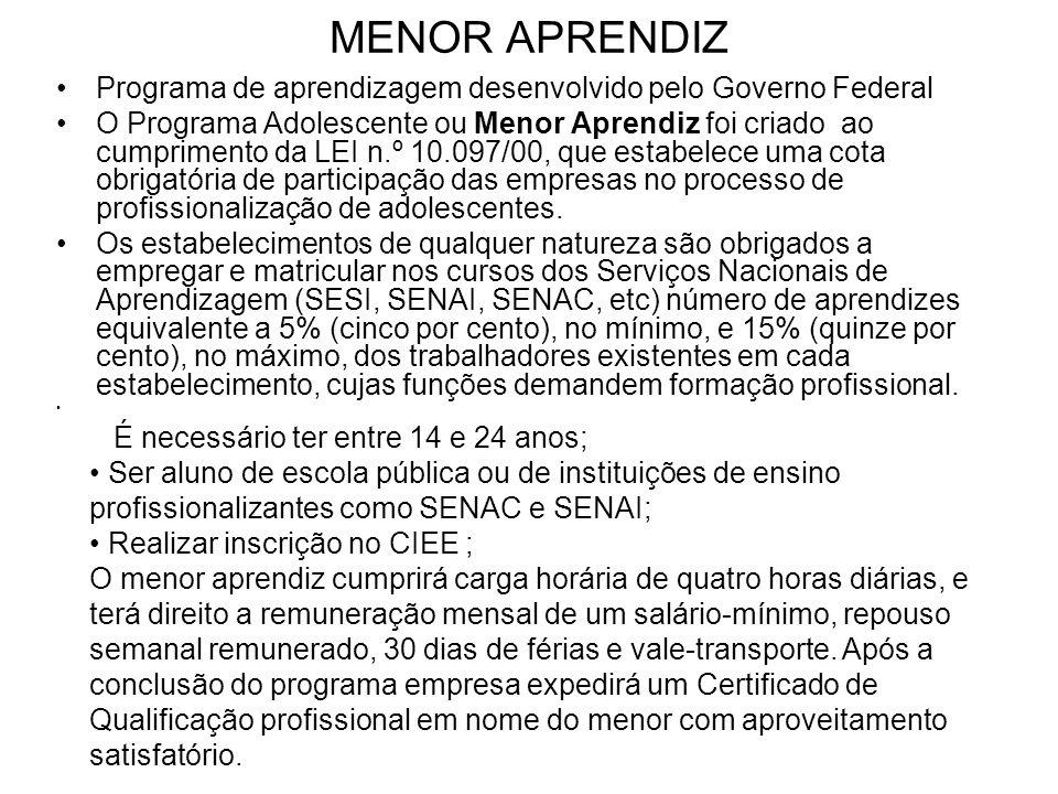 MENOR APRENDIZ Programa de aprendizagem desenvolvido pelo Governo Federal.