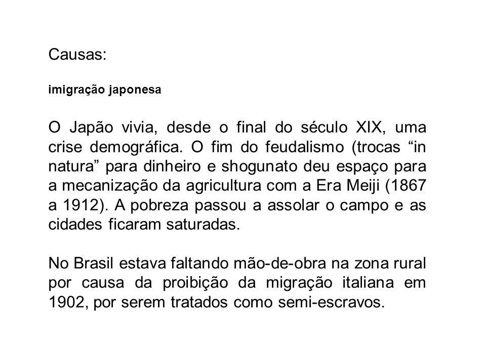 Causas: imigração japonesa.