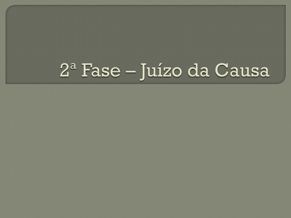 2ª Fase – Juízo da Causa