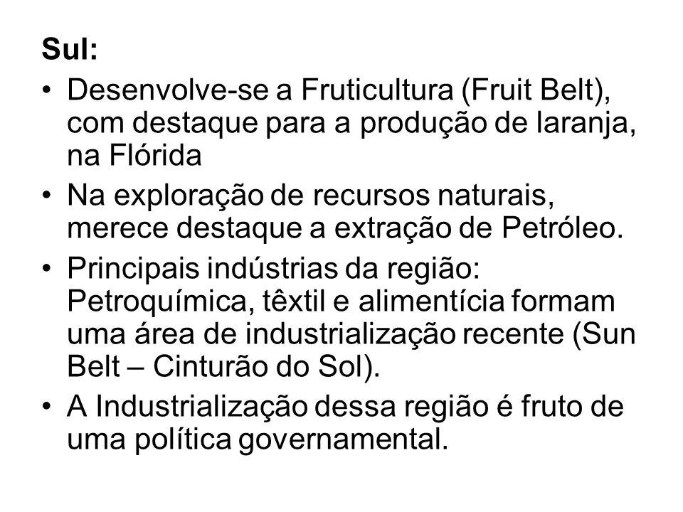 Sul: Desenvolve-se a Fruticultura (Fruit Belt), com destaque para a produção de laranja, na Flórida.