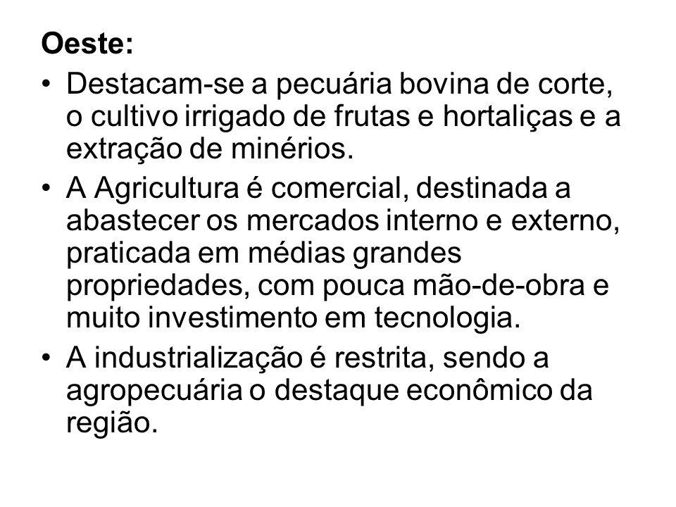 Oeste: Destacam-se a pecuária bovina de corte, o cultivo irrigado de frutas e hortaliças e a extração de minérios.