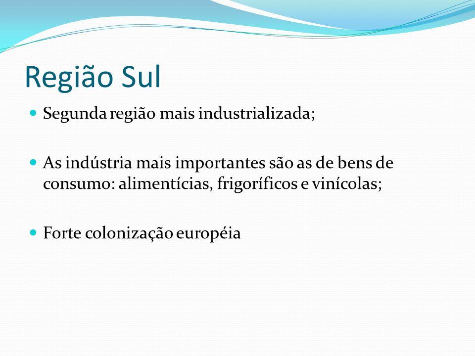 Região Sul Segunda região mais industrializada;