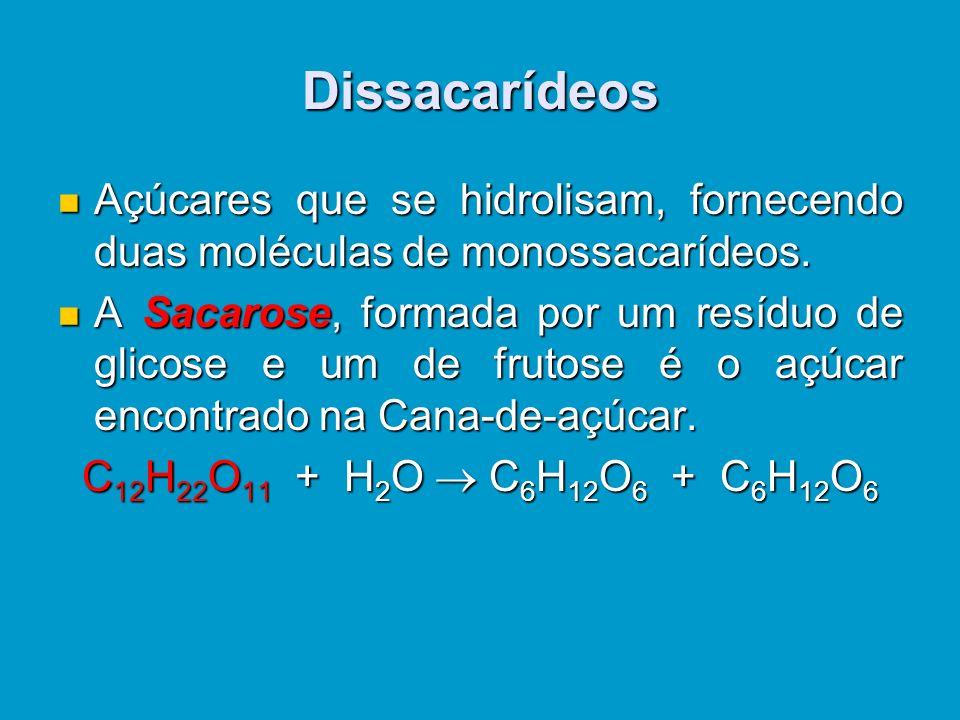 Dissacarídeos Açúcares que se hidrolisam, fornecendo duas moléculas de monossacarídeos.