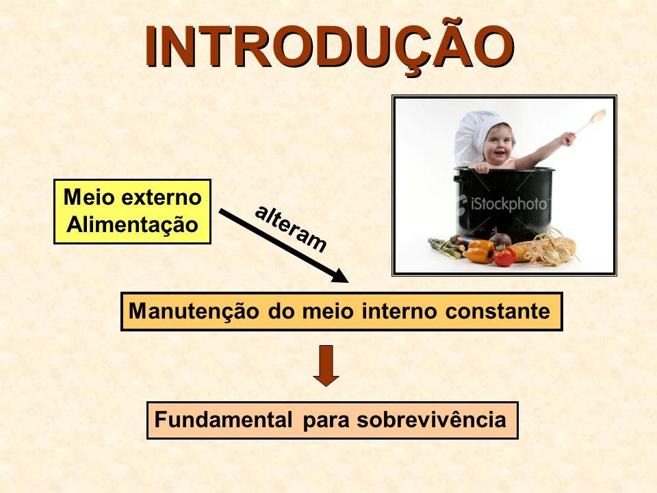 INTRODUÇÃO Meio externo Alimentação alteram