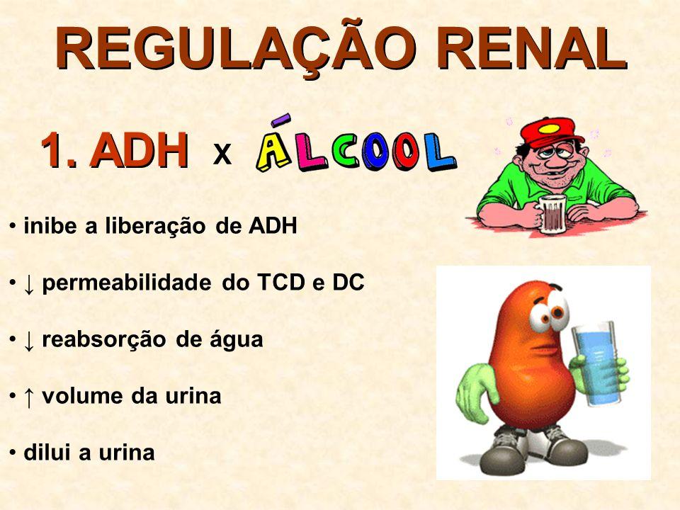 REGULAÇÃO RENAL 1. ADH X inibe a liberação de ADH