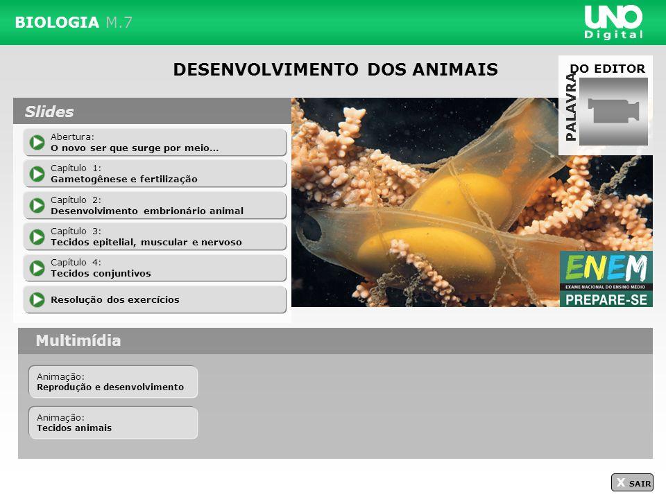 DESENVOLVIMENTO DOS ANIMAIS