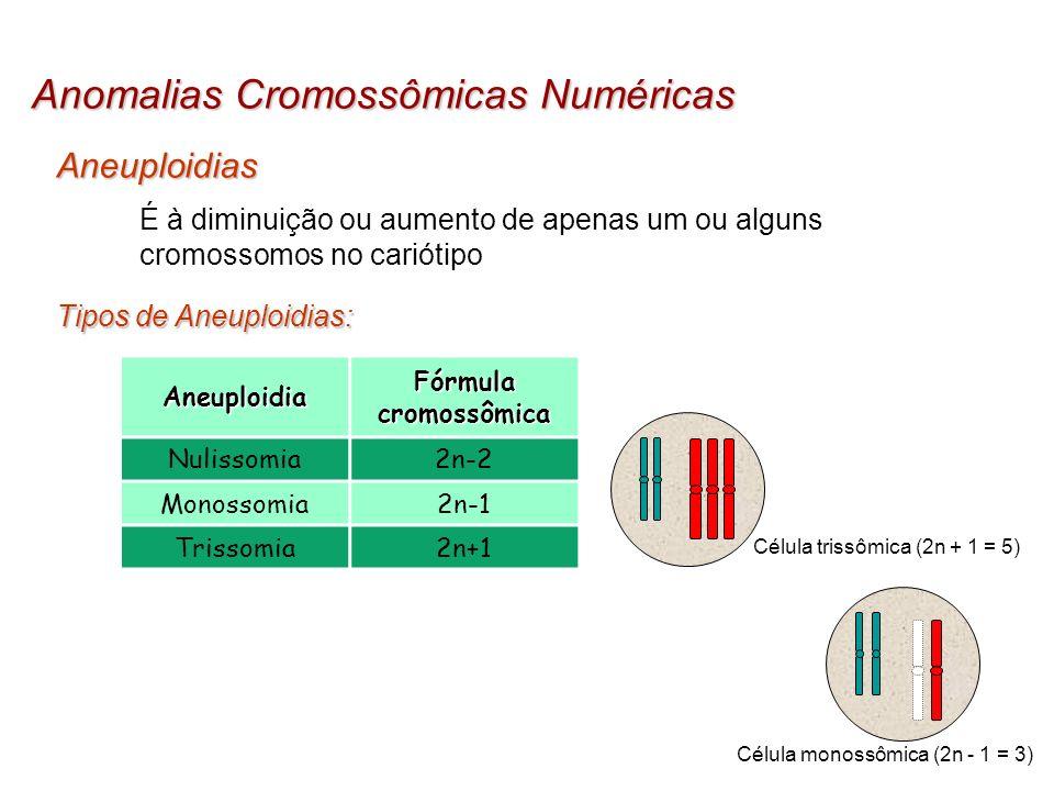 Anomalias Cromossômicas Numéricas