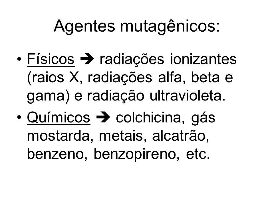 Agentes mutagênicos:Físicos  radiações ionizantes (raios X, radiações alfa, beta e gama) e radiação ultravioleta.