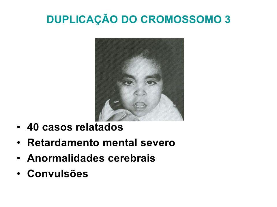DUPLICAÇÃO DO CROMOSSOMO 3