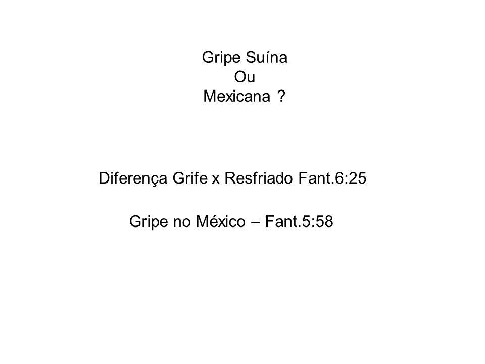 Gripe Suína Ou Mexicana Diferença Grife x Resfriado Fant.6:25 Gripe no México – Fant.5:58