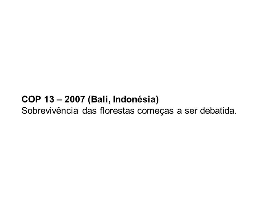 COP 13 – 2007 (Bali, Indonésia) Sobrevivência das florestas começas a ser debatida.