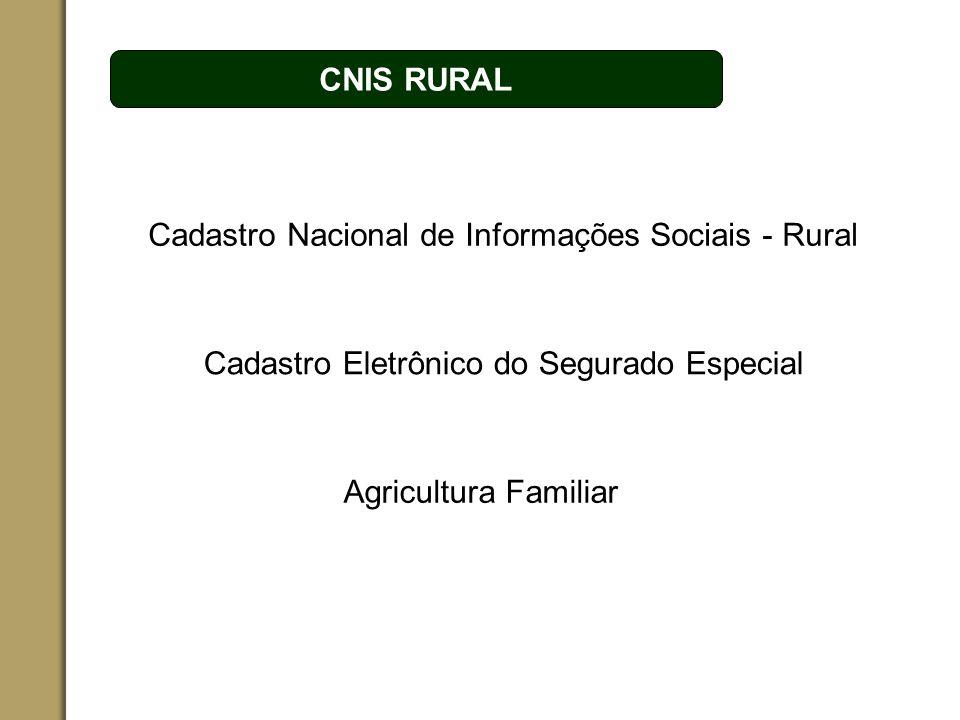 Cadastro Nacional de Informações Sociais - Rural